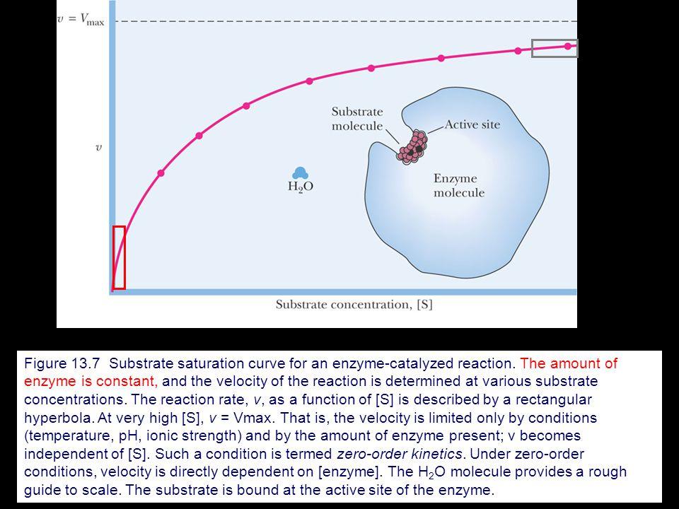 Biochemistry 林正輝 612 #5220 Chapter 13: Enzymes - ppt video ...