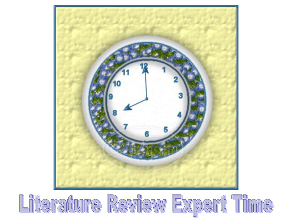 Literature Review Expert Time