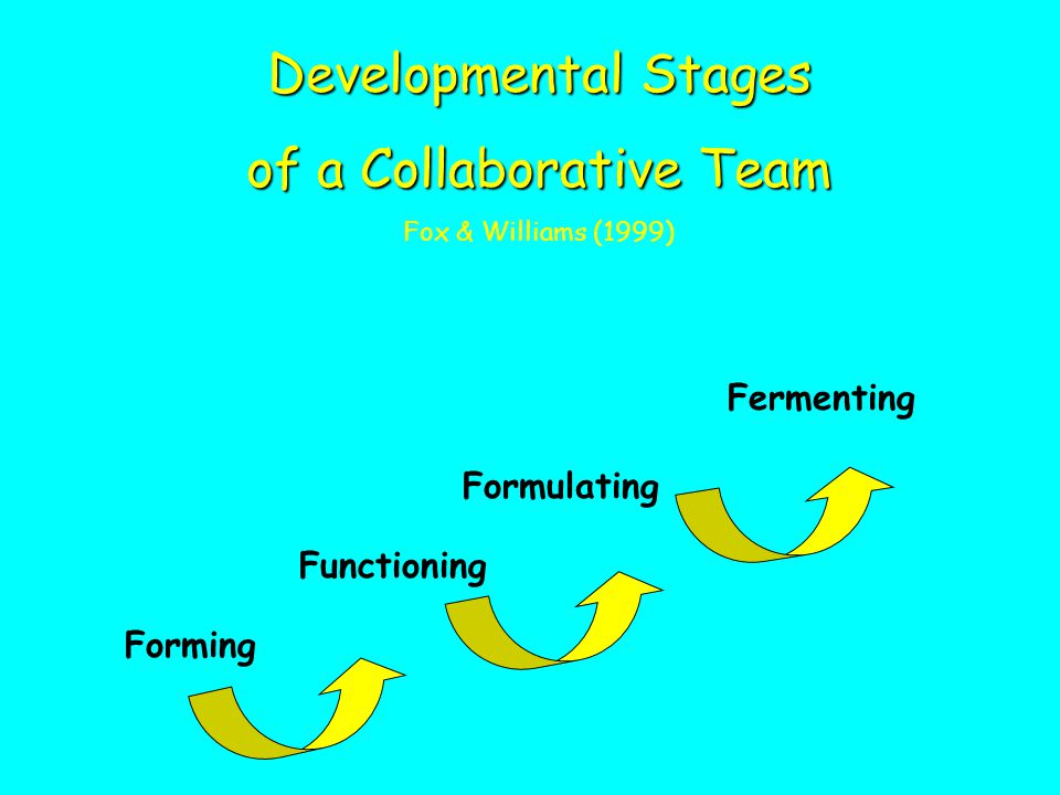 of a Collaborative Team