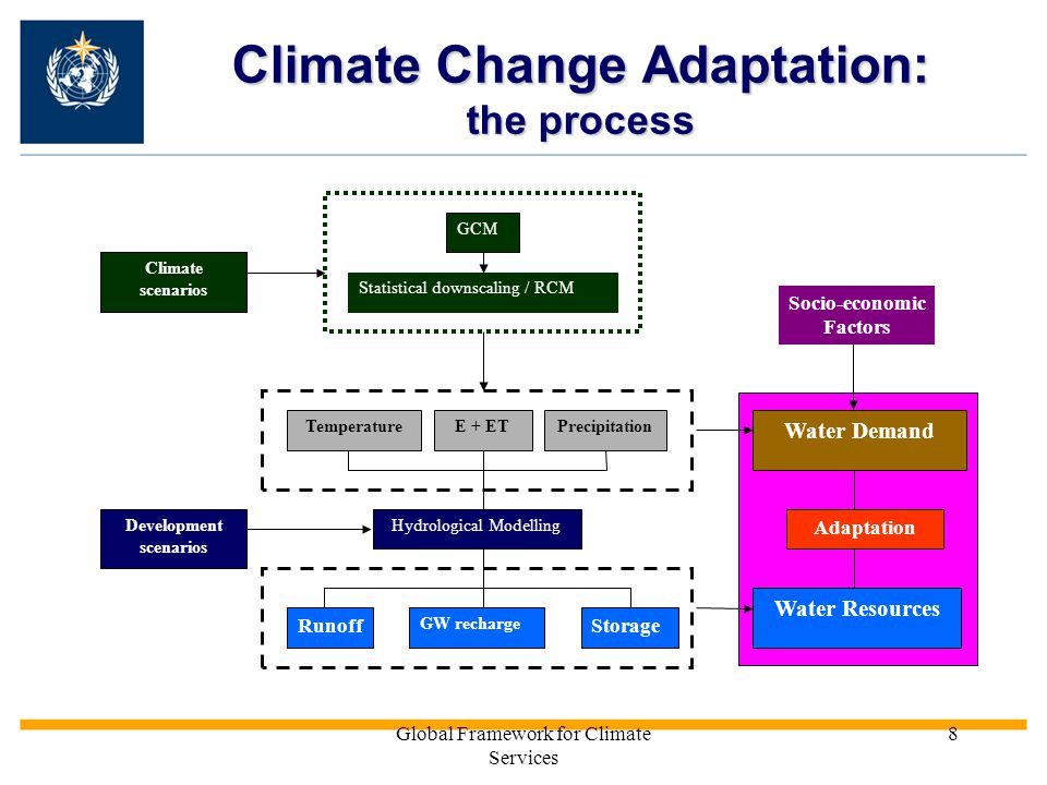 the process of adaptation Engaging in intercultural adaptation processes this video explains some noted adaptation processes that most people go though the stress, adaptation, and growth model in particular shows how cross-cultural challenges help develop intercultural communication competence.