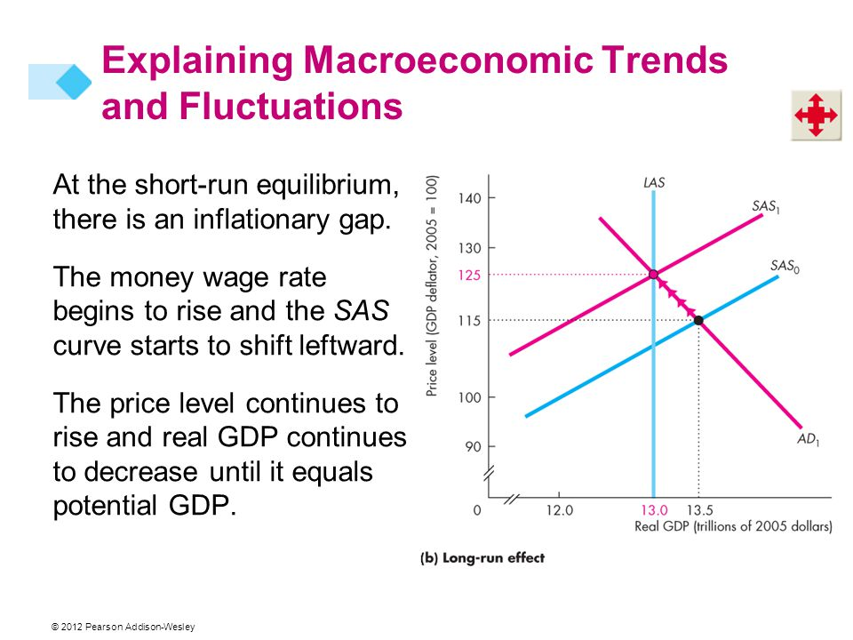 Explaining Macroeconomic Trends and Fluctuations