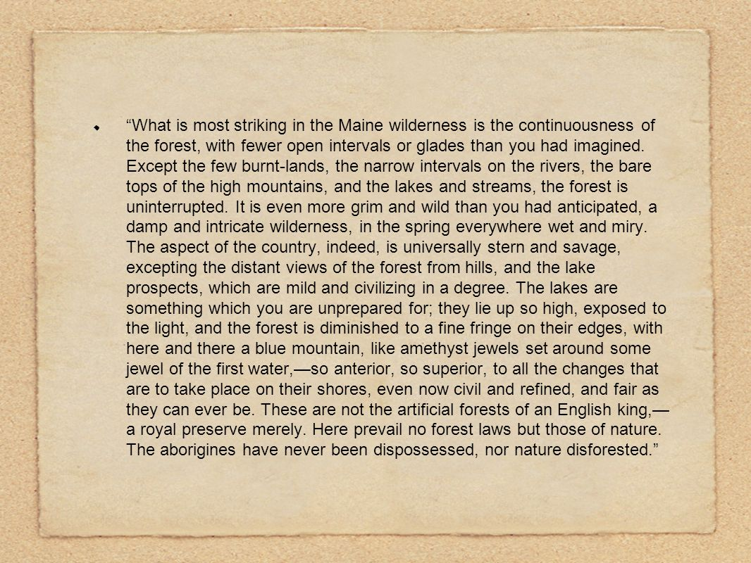 What is most striking in the Maine wilderness is the continuousness of the forest, with fewer open intervals or glades than you had imagined.