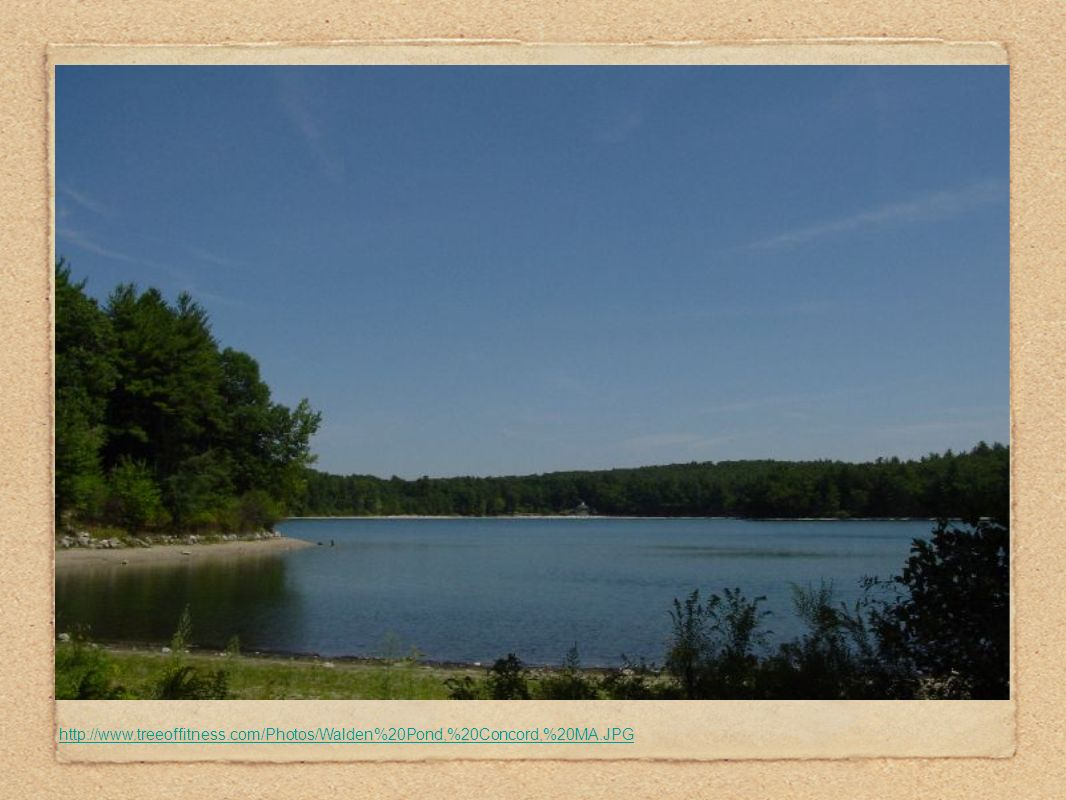 http://www. treeoffitness. com/Photos/Walden%20Pond,%20Concord,%20MA