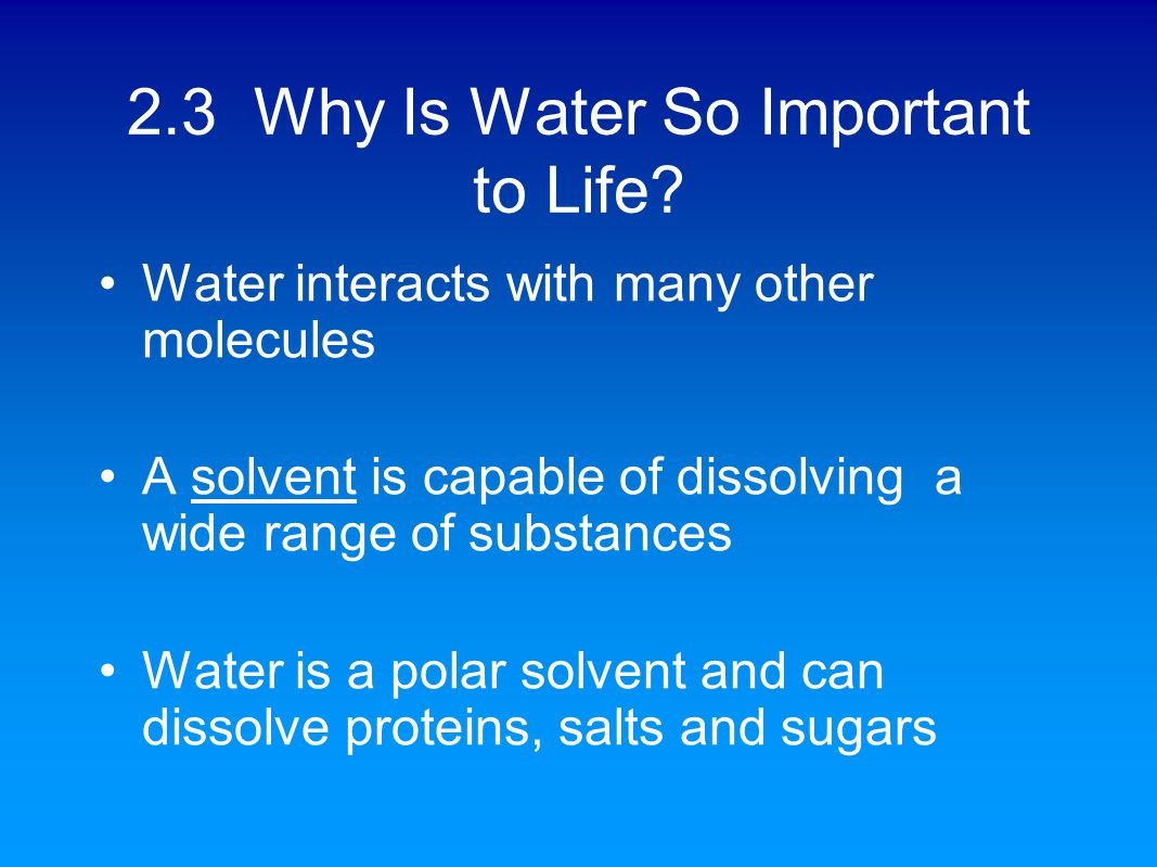 why water is important to life Water cycle is another important material cycle water is one of the important substances necessary for life on average water constitutes 70% of the body weight of an organism.