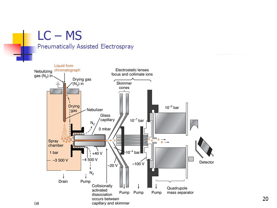 LC – MS Pneumatically Assisted Electrospray