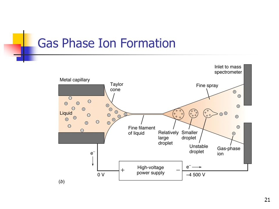 Gas Phase Ion Formation