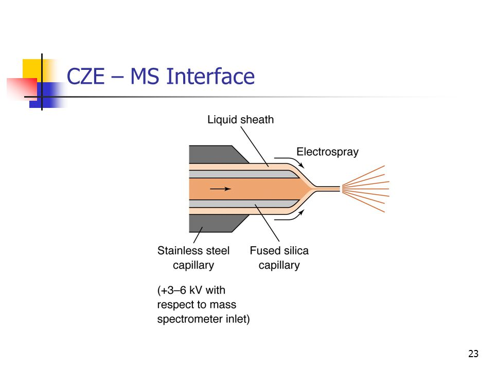 CZE – MS Interface