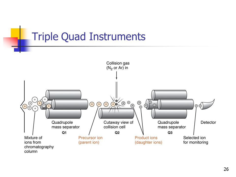 Triple Quad Instruments