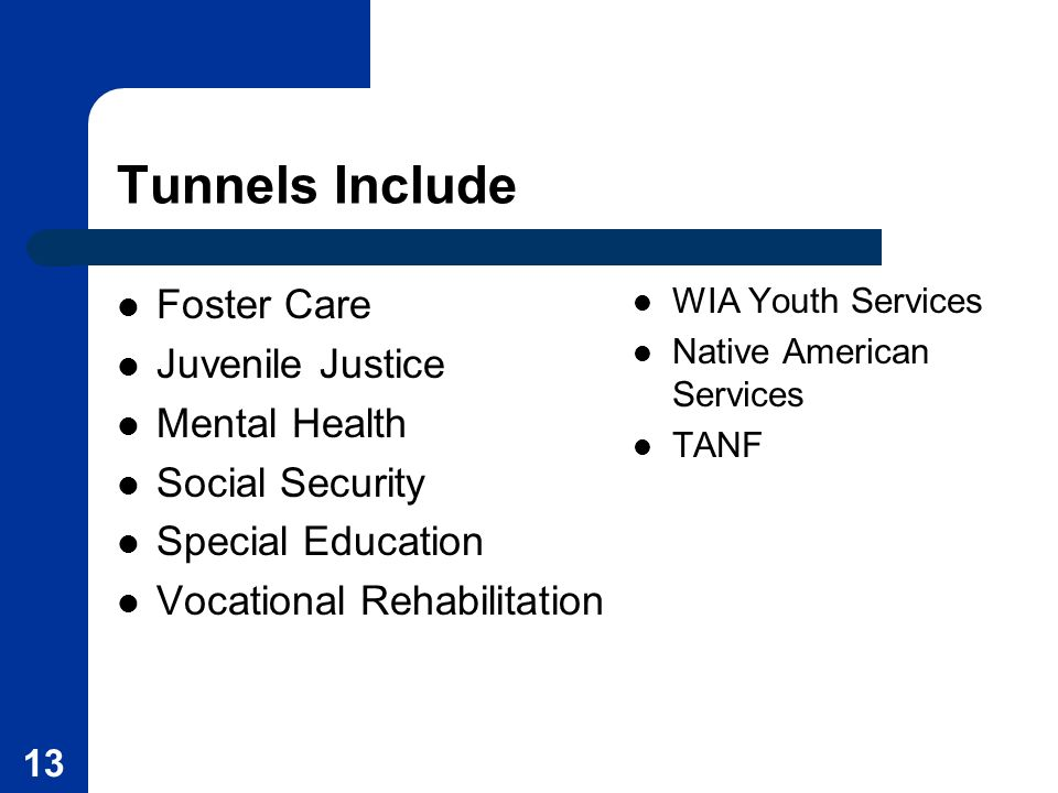 Tunnels Include Foster Care Juvenile Justice Mental Health