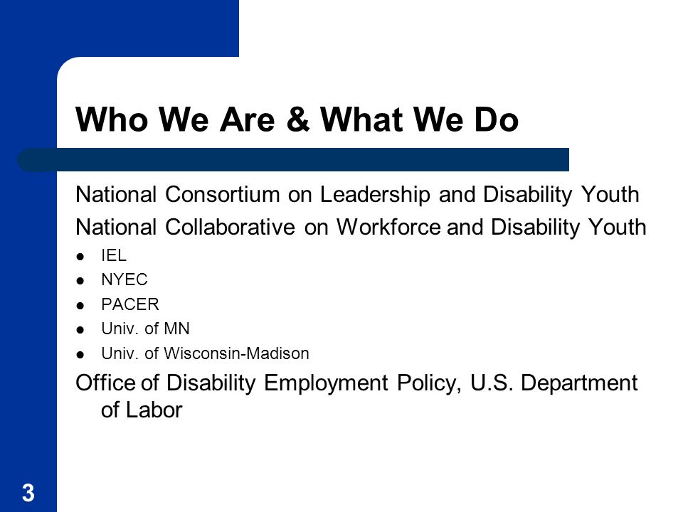 Who We Are & What We Do National Consortium on Leadership and Disability Youth. National Collaborative on Workforce and Disability Youth.