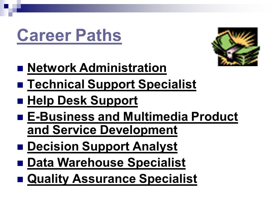An overview and the research of the career path of a network support ...
