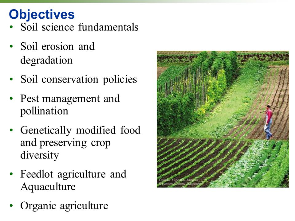 Soils agriculture and the future of food ppt download for Soil use and management