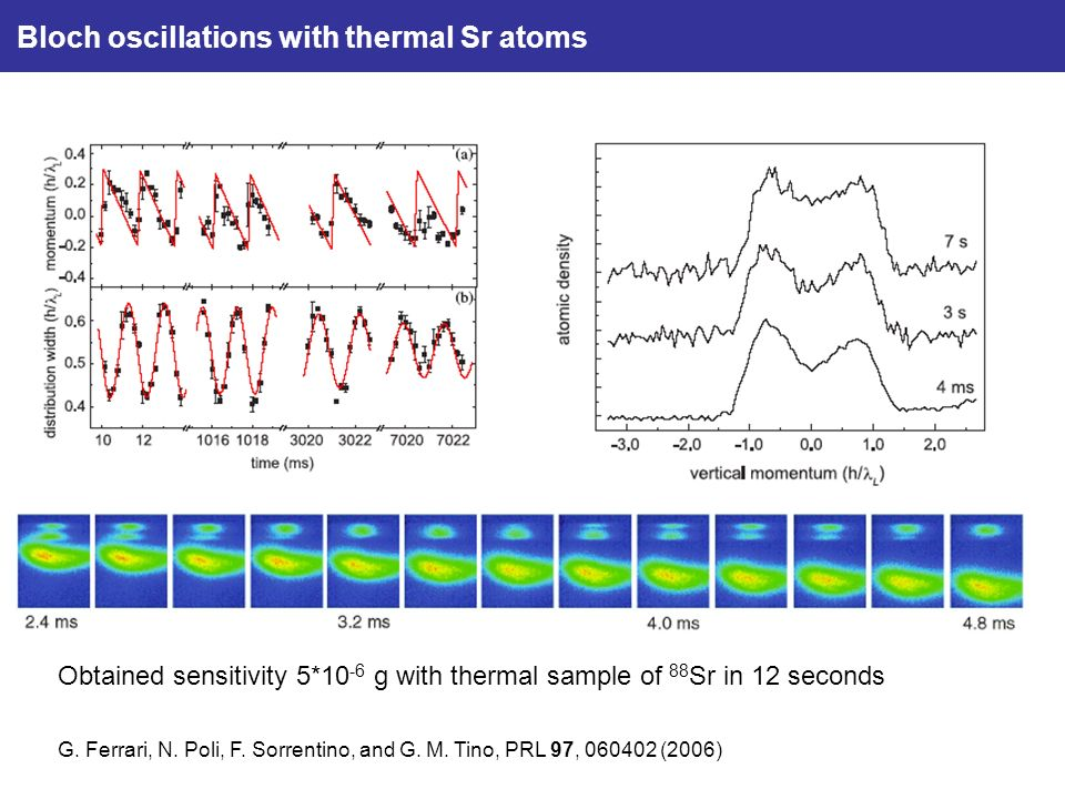 Bloch oscillations with thermal Sr atoms