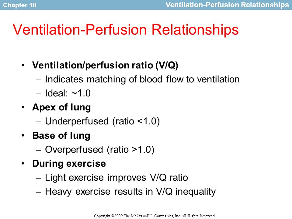 Ventilation Perfusion Ratio : Respiration during exercise ppt download