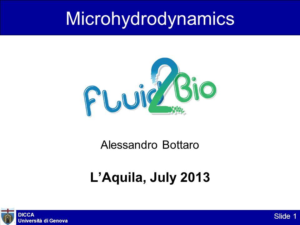 Microhydrodynamics L'Aquila, July 2013 Alessandro Bottaro DICCA