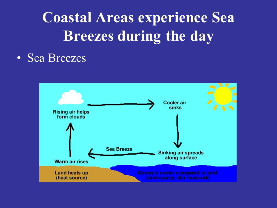 Coastal Areas experience Sea Breezes during the day