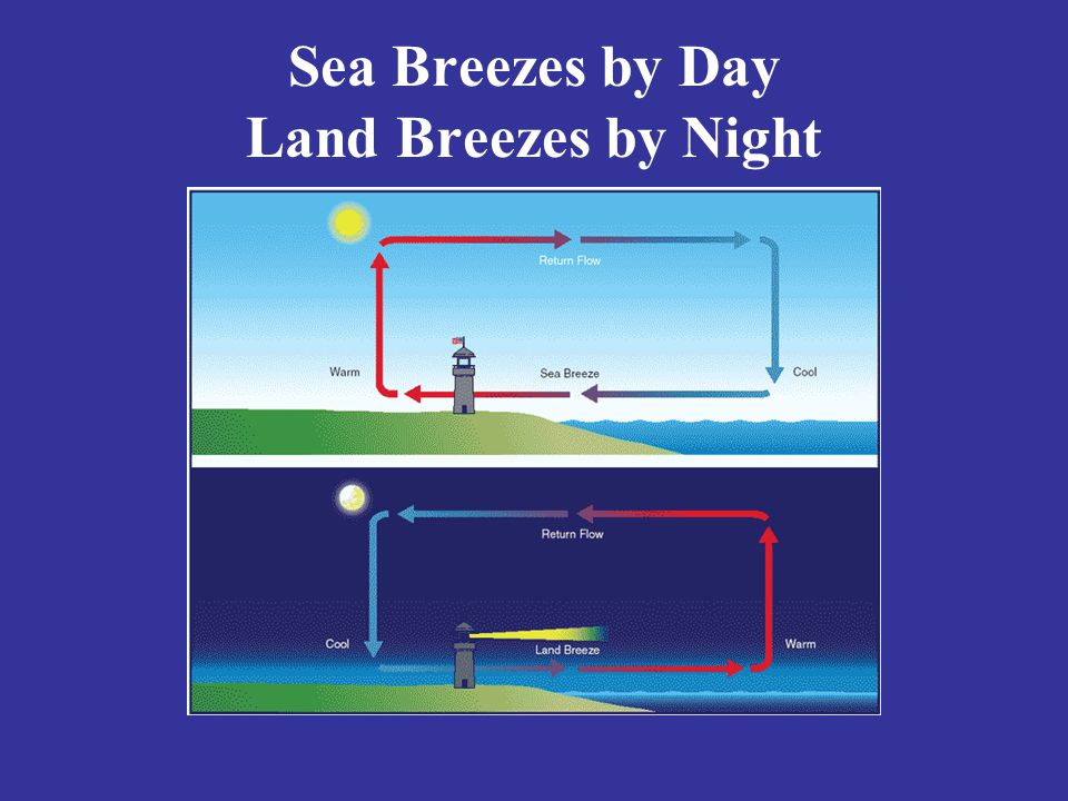 Sea Breezes by Day Land Breezes by Night