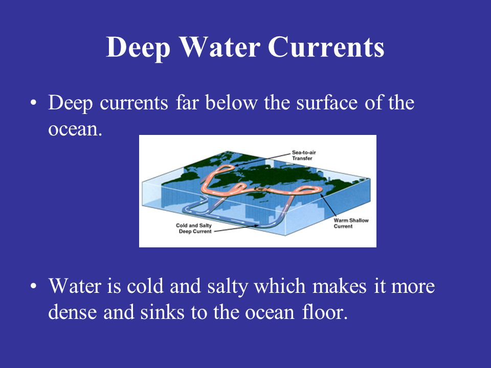 Deep Water Currents Deep currents far below the surface of the ocean.