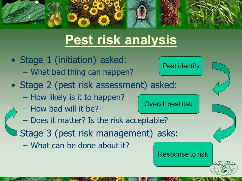 Pest risk analysis Stage 1 (initiation) asked: