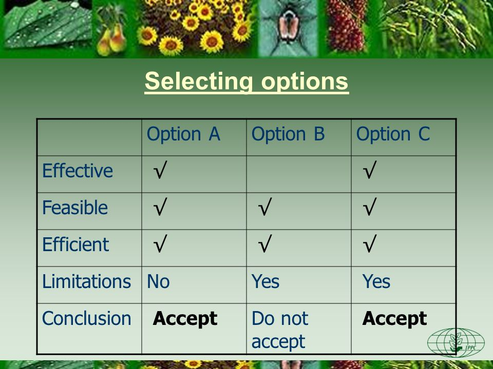 Selecting options Option A Option B Option C Effective √ Feasible