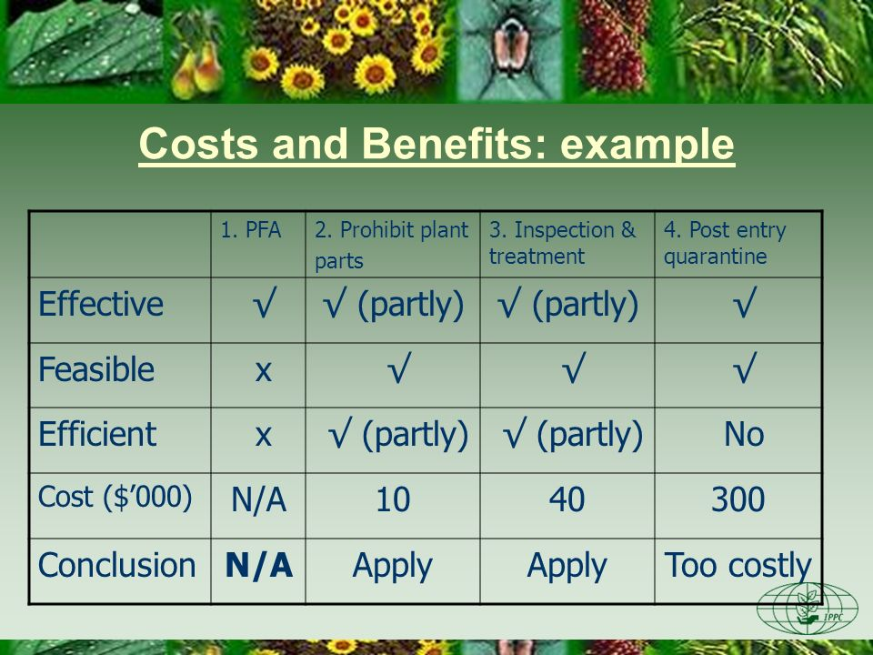 Costs and Benefits: example