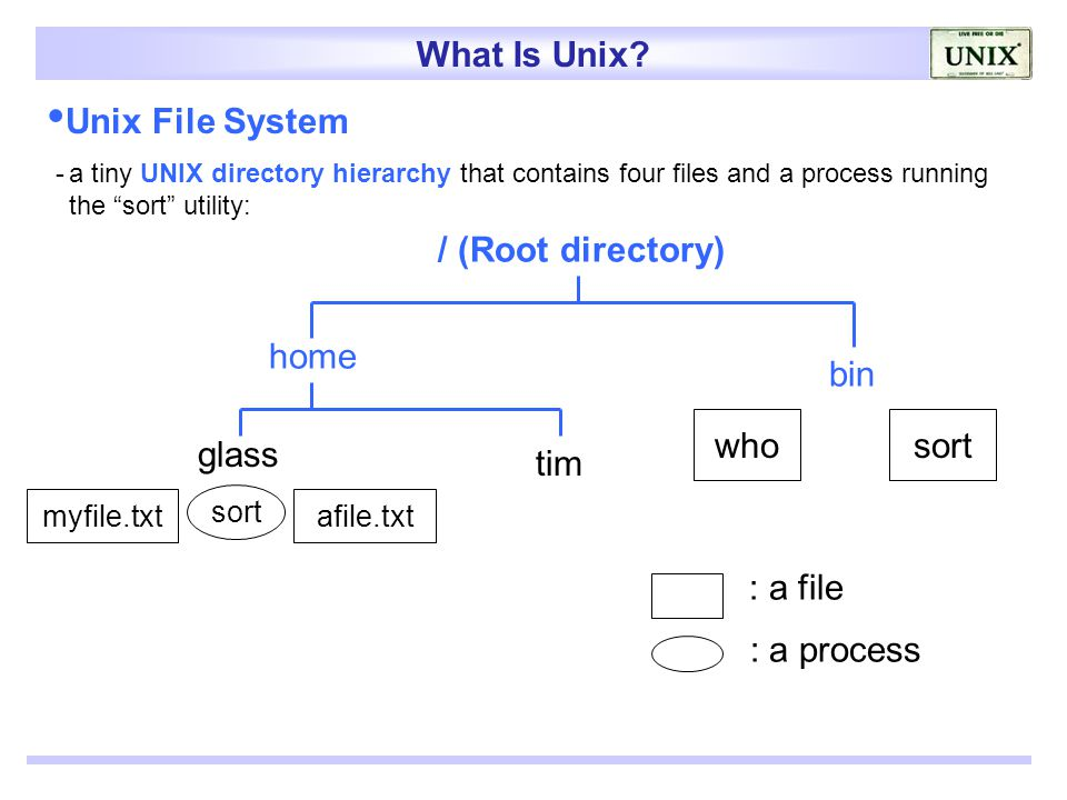 the unix file system pdf