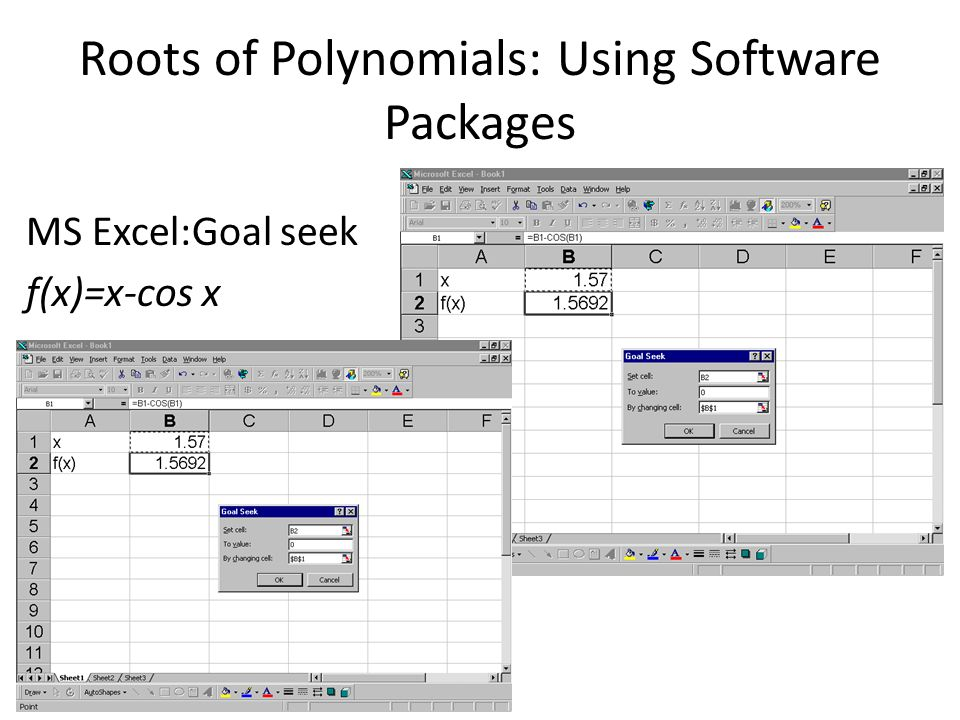 Roots of Polynomials: Using Software Packages