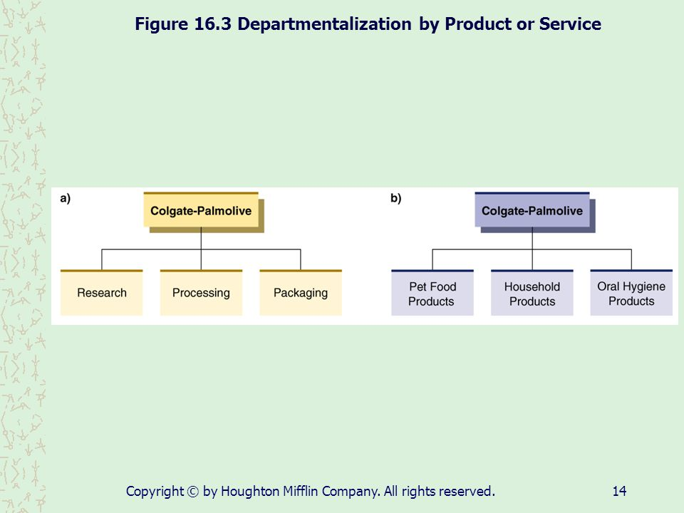 Figure 16.3 Departmentalization by Product or Service