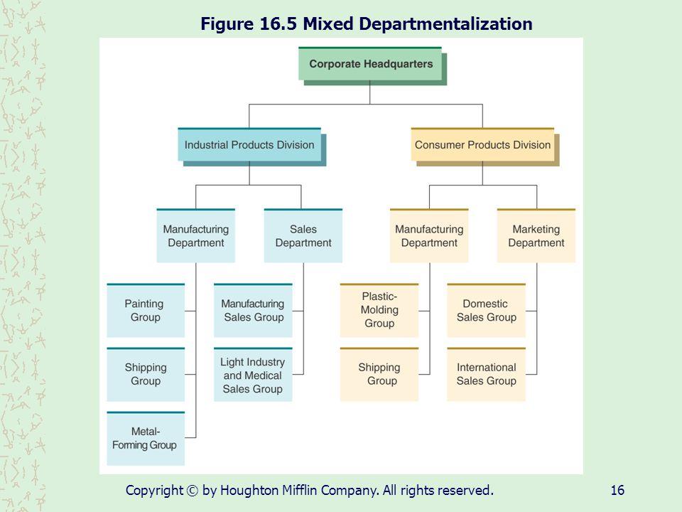 Figure 16.5 Mixed Departmentalization