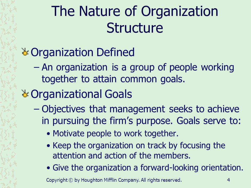 The Nature of Organization Structure