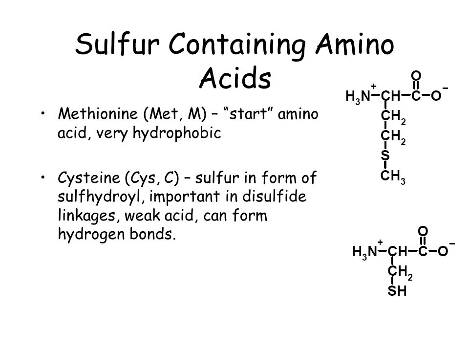 Amino acids, peptides, and proteins - ppt video online download