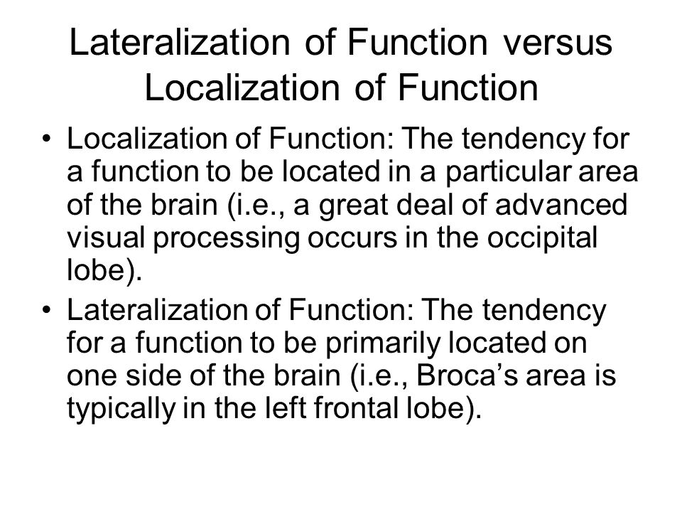 localization function in the brain What is localisation of function of the brain localisation of brain refers to the theory that the human brain is capable of carrying out different functions such as.