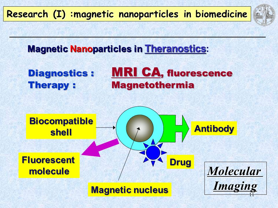 Research (I) :magnetic nanoparticles in biomedicine