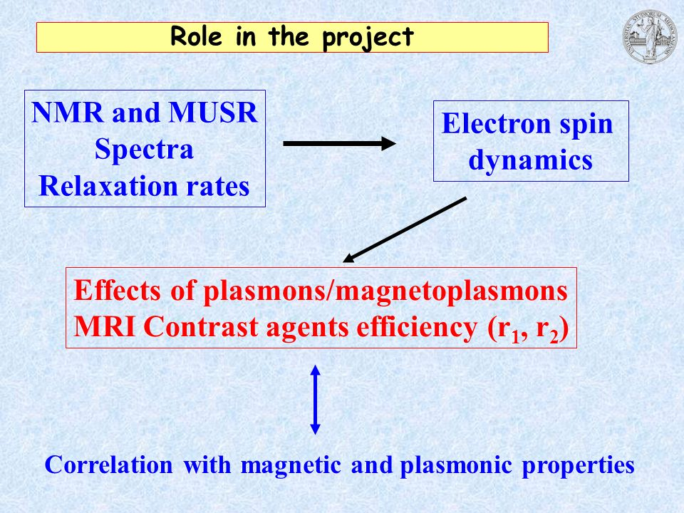 Effects of plasmons/magnetoplasmons
