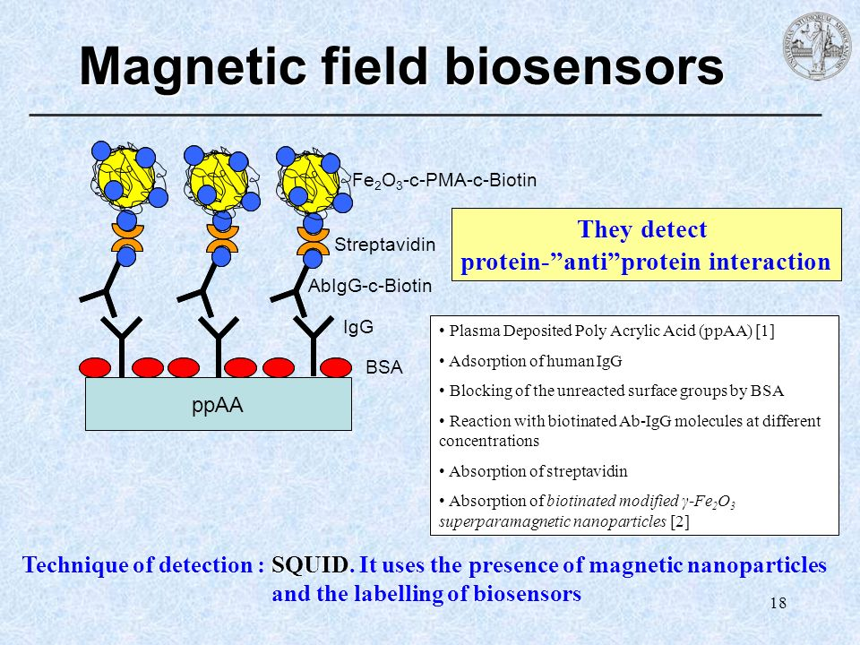 Magnetic field biosensors