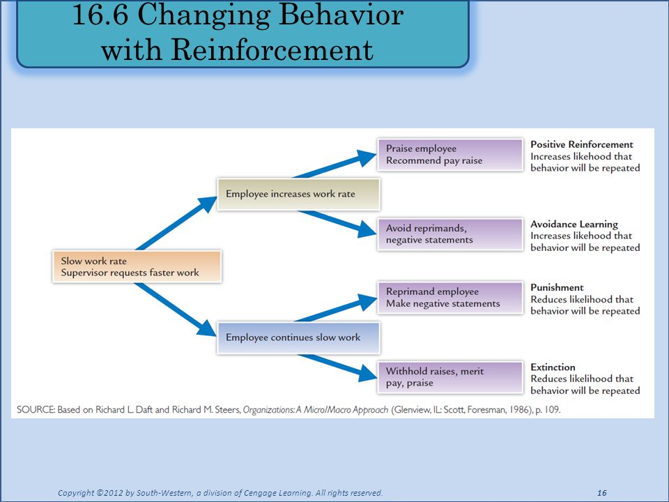 16.6 Changing Behavior with Reinforcement
