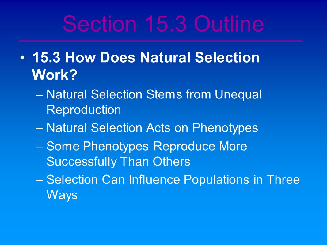 Natural Selection Affects Populations Not Individual Organisms