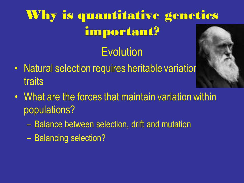 Why Genetic Variation Is Important For Natural Selection