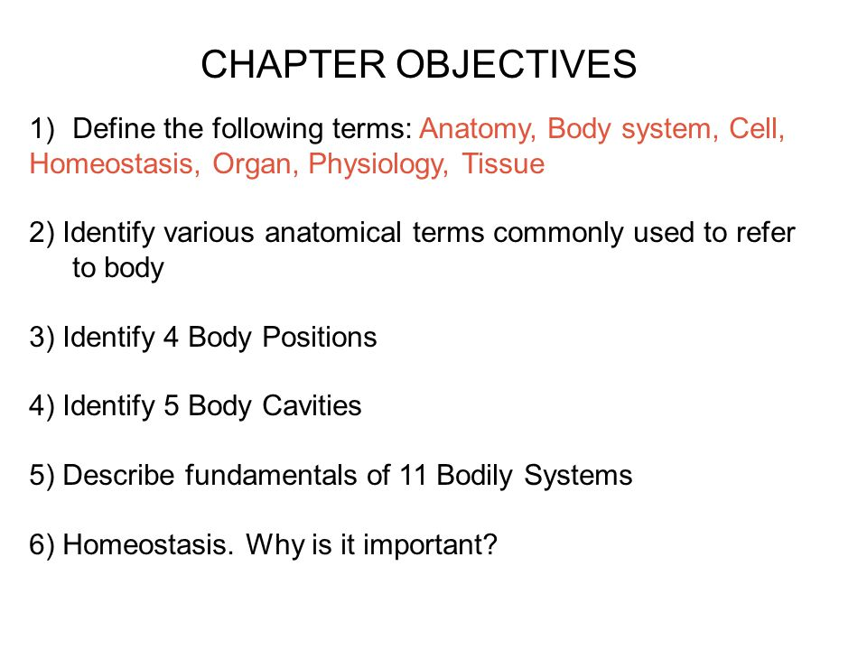 Human Anatomy and Physiology - ppt video online download