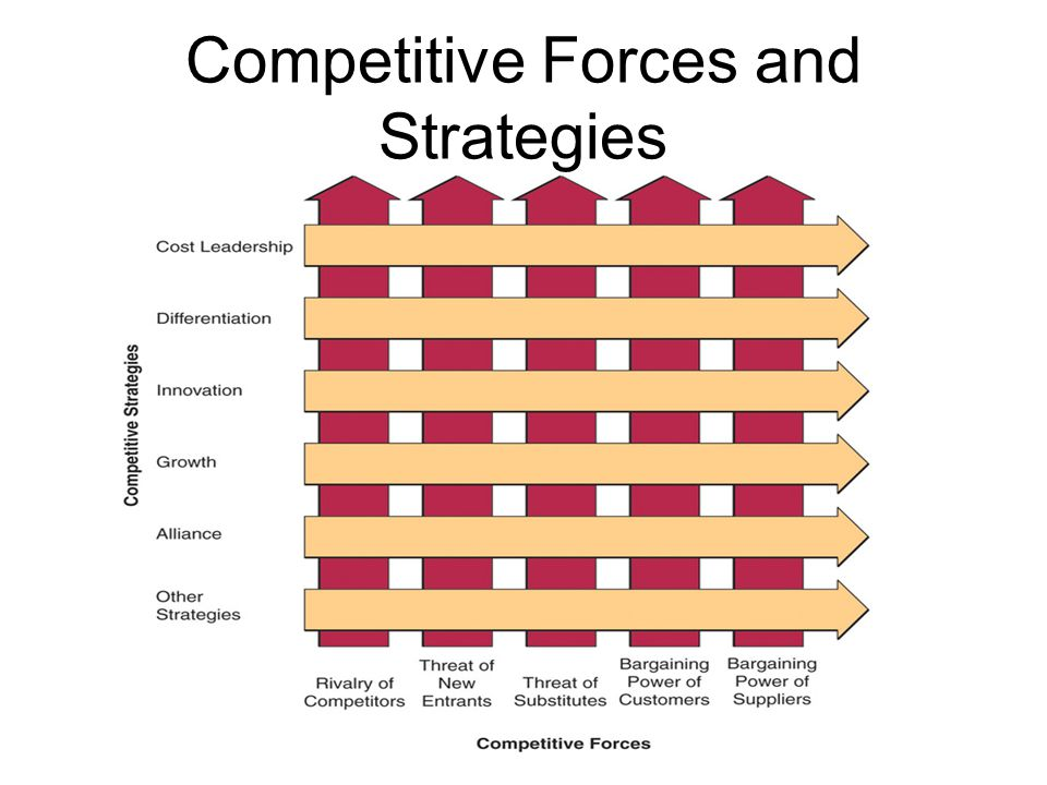survive in the dynamic and competitive business environment Supporting the business-level strategy: competitive  understand how an organization and its environment  the relationship between an organization and its.