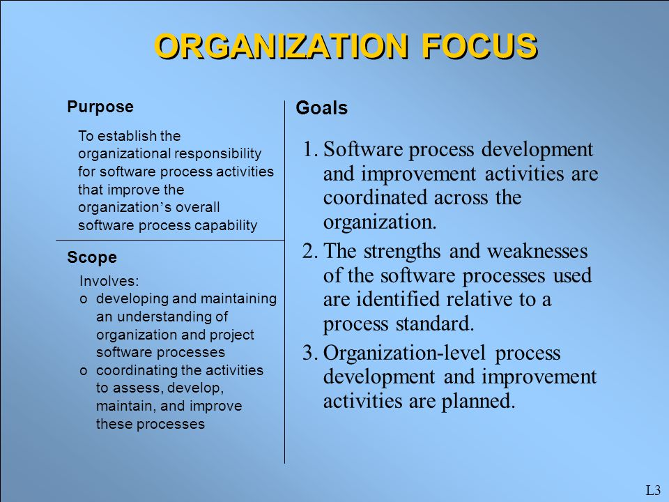 organizational focus and goals essay Essay paper on organizational structure  to all project aspects to meet their goals  exclusive work and preserving a strapping focus on.