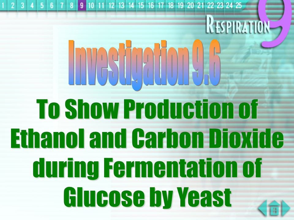 determining the production of glucose during Previous studies have demonstrated that temperature, ph and substrate are important factors controlling biological h2 production response surface methodology with central composite design was used in this study to optimize h2 production from glucose by an anaerobic culture the individual and interactive effects of ph.