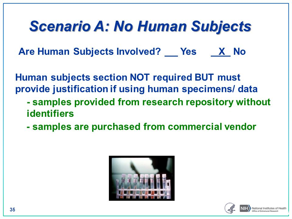 Scenario A: No Human Subjects