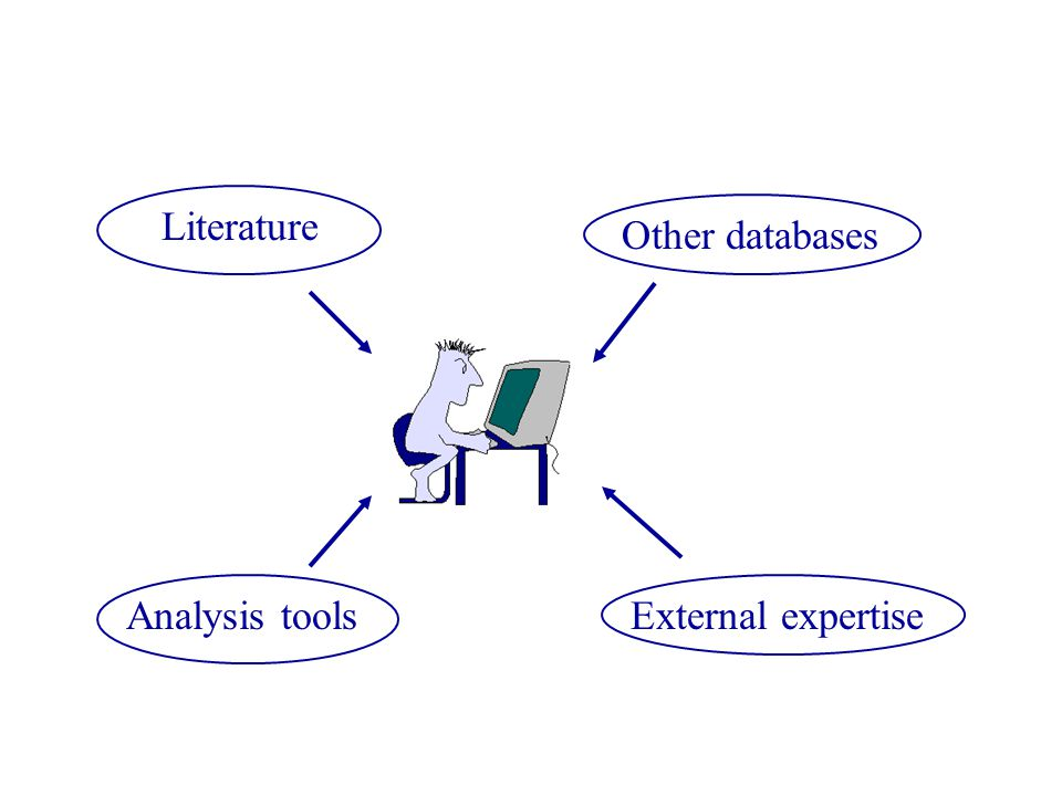 Literature Other databases Analysis tools External expertise