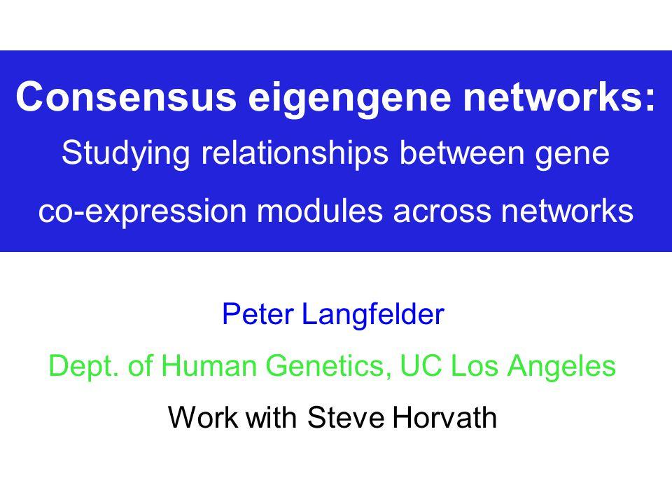 Consensus eigengene networks: Studying relationships between gene  co-expression modules across networks Peter Langfelder Dept  of Human  Genetics, UC Los