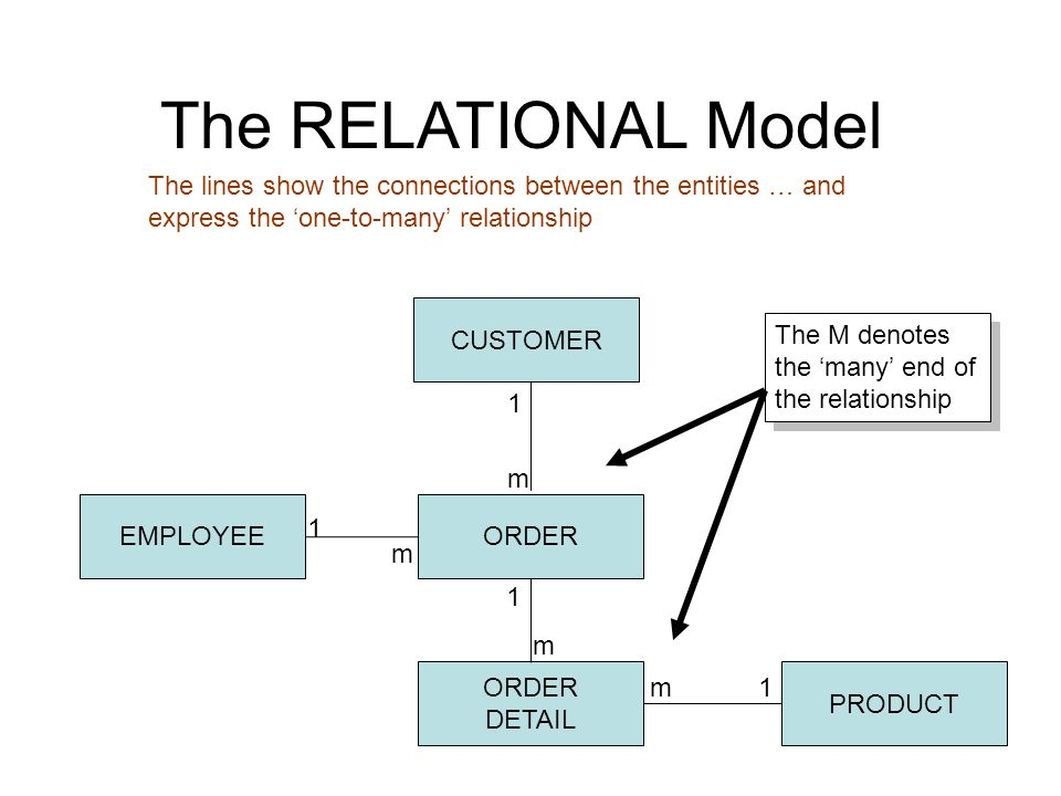relational database model Now that you have the informational context for database features and environments, you'll start building in this module, you'll learn relational data model terminology, integrity rules, and the create table statement.
