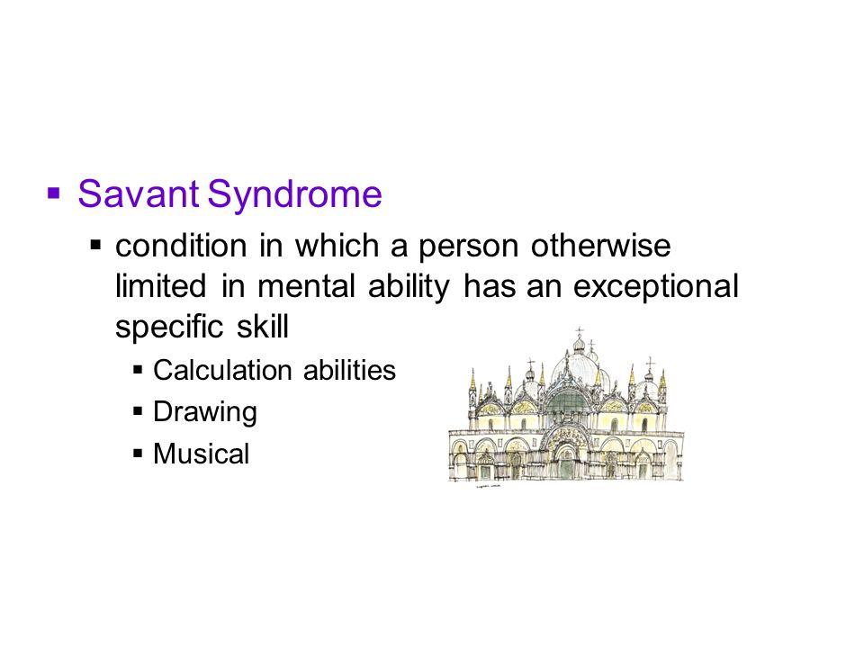 savant syndrom forschung