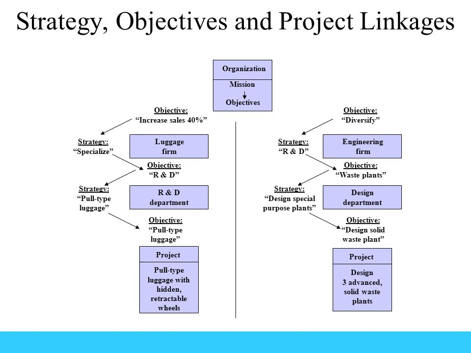 Strategy, Objectives and Project Linkages