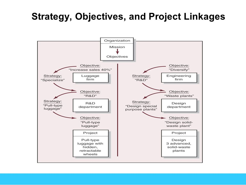 Strategy, Objectives, and Project Linkages