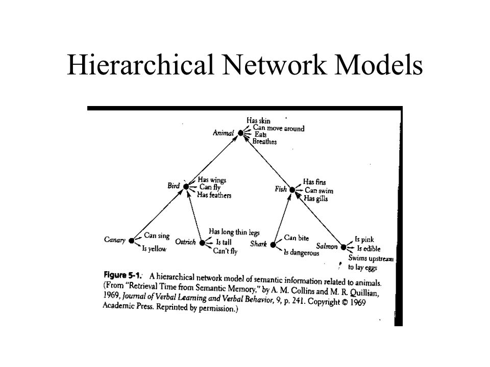 lexical semantics hyponyny networks Semantic relations and the lexicon antonymy hyponymy, meronymy, and other why lexical relations 7 semantic relations.